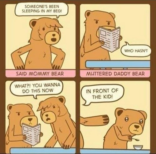 bears cheating goldilocks funny - 8407968000