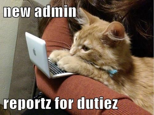 new admin reportz for dutiez
