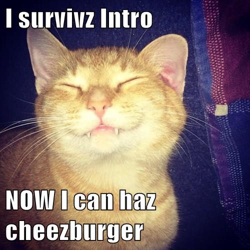 Cheezburger Image 8408398336