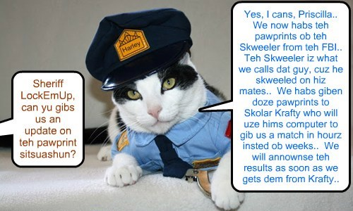 Sheriff LockEmUp answers reporters kwestions abowt teh Pawprint process in teh KKPS Nip Skandal Case..  Results to identify teh Skweeler kittie ar eggspected bery soon..