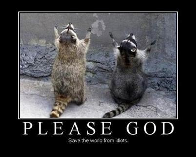 god prayer raccoons funny - 8408489472
