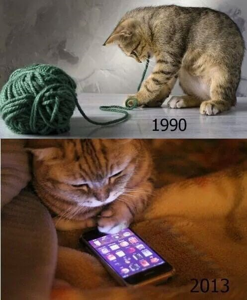phone Then And Now kids these days Cats failbook g rated - 8408639488