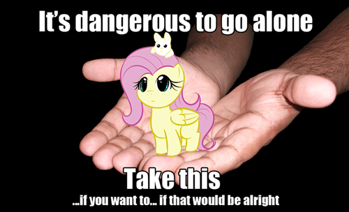 secret weapon,its dangerous to go alone,fluttershy