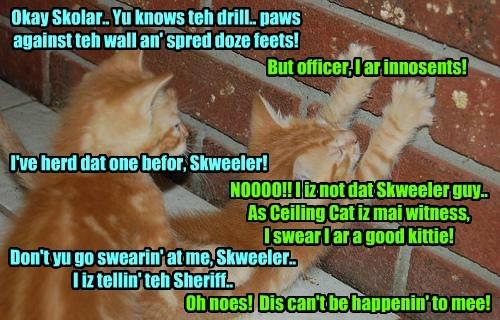 Okay Skolar.. Yu knows teh drill.. paws against teh wall an' spred doze feets! But officer, I ar innosents! I've herd dat one befor, Skweeler! NOOOO!! I iz not dat Skweeler guy.. As Ceiling Cat iz mai witness, I swear I ar a good kittie! Don't yu go swearin' at me, Skweeler.. I iz tellin' teh Sheriff.. Oh noes! Dis can't be happenin' to mee!