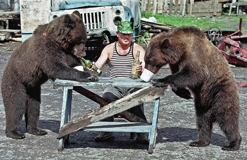 Picture of russian drinking with bears