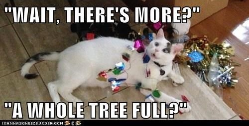 christmas,christmas tree,destroy,Cats