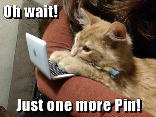 Oh wait!  Just one more Pin!