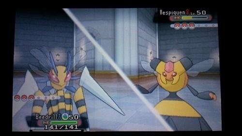 Pokémon vespiqueen bees mega beedrill - 8411792128