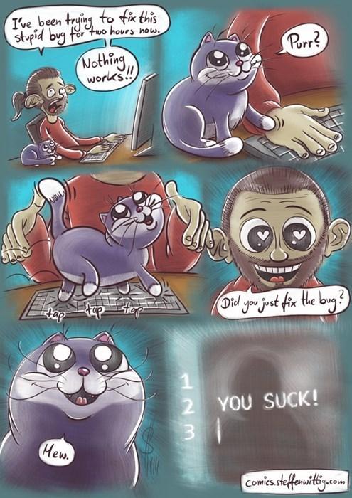 programming computers Cats web comics - 8411810560