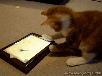 How Do You Catch The Virtual Mouse?!