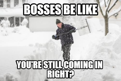 bosses be like,snow,bosses,winter