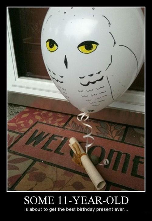 Owl funny balloon Hogwarts - 8414134784