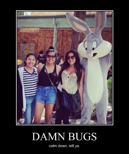 Sexy Ladies bugs bunny bewbs funny - 8414135296
