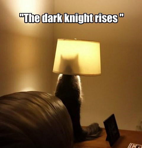 """The dark knight rises """