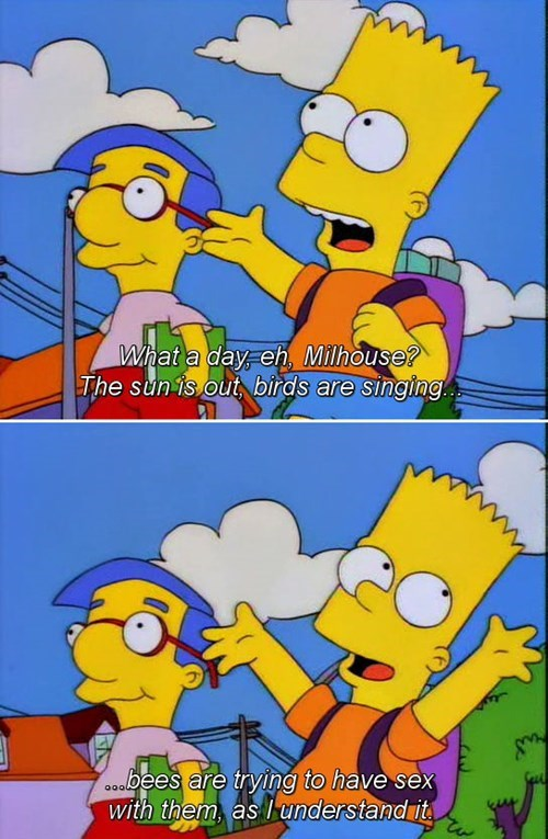 birds bees sexy times the simpsons funny - 8414647296