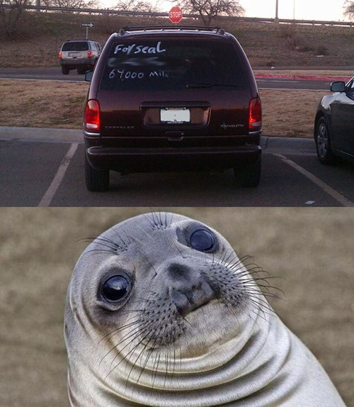 cars awkward seal spelling - 8414877696