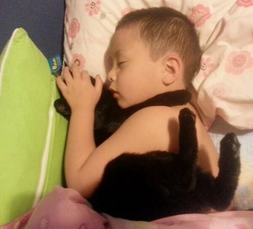 nap kids cute parenting Cats sleeping - 8415225344