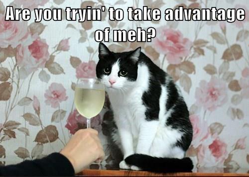 wine bribe Cats - 8415335680
