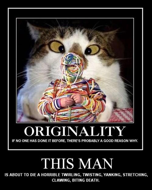 Cats funny idiots yarn wtf - 8415749120