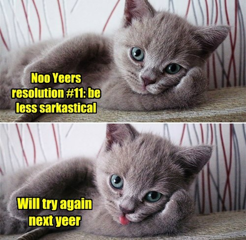 new year,resolution,Cats