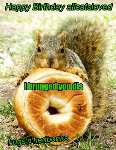 Cheezburger Image 8416166144