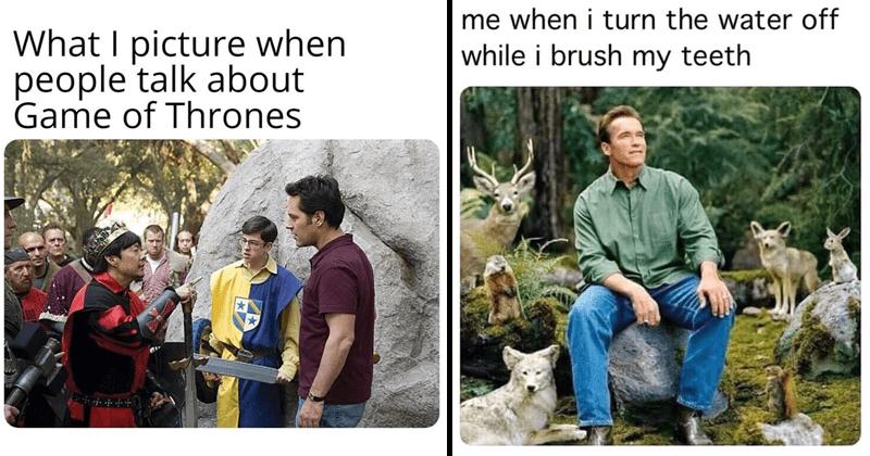 Funny random memes, hannibal burress, arnold schwarzennegger.