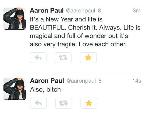 aaron paul,twitter,new years,failbook