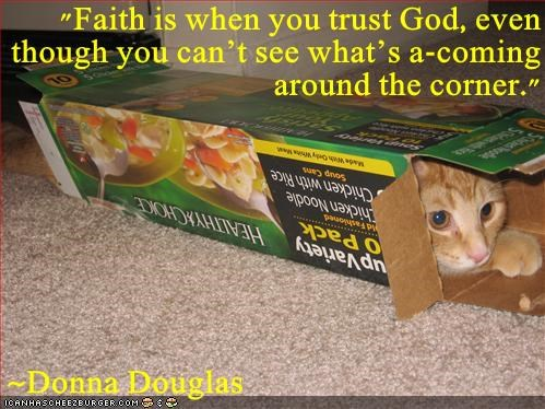 animals god cat faith see caption trust cant - 8417286400