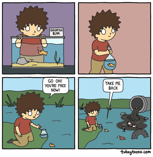 sea water fish web comics - 8417308928