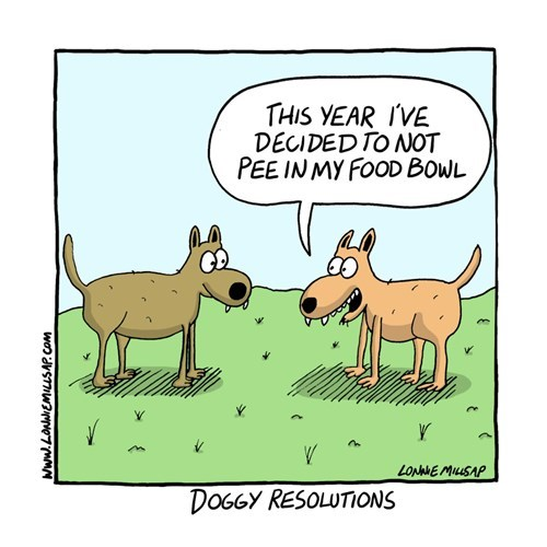 dogs resolution web comics - 8417402368