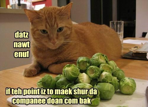 Cheezburger Image 8417671680