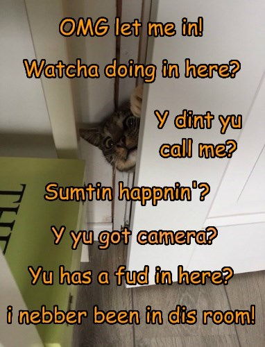 OMG let me in! Watcha doing in here? Y dint yu call me? Sumtin happnin'? Y yu got camera? Yu has a fud in here? i nebber been in dis room!