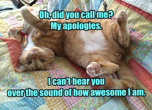 Oh, did you call me? My apologies. I can't hear you over the sound of how awesome I am.