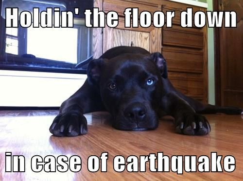 Holdin' the floor down in case of earthquake