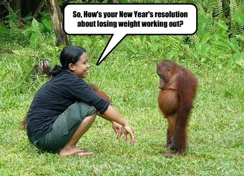 new year resolution monkey rude - 8418245632