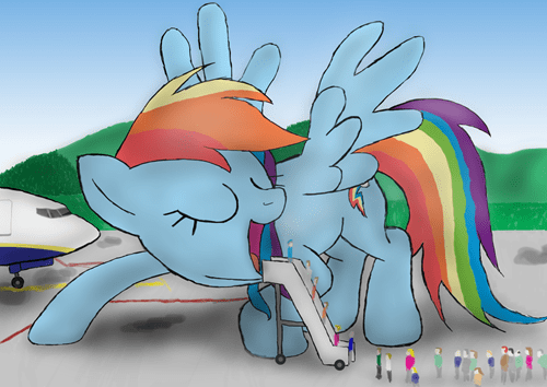 wtf rainbow dash airplane - 8418611200