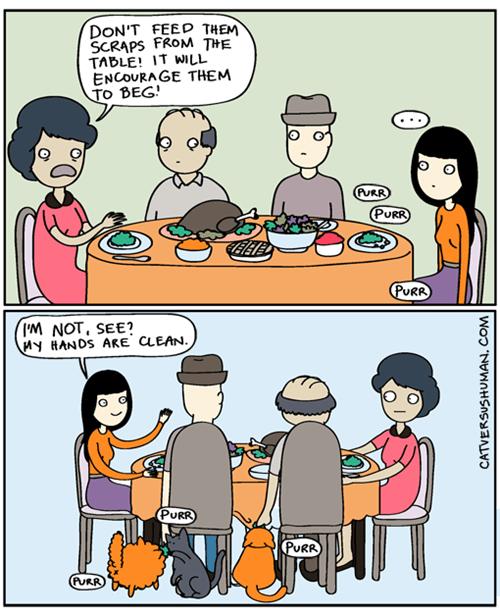 food Cats web comics