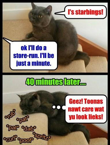 tuna store run primp starving Caturday caption - 8419351296