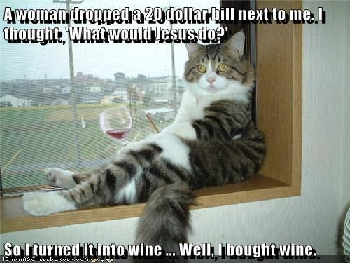 animals jesus cat woman 20 wine dollars caption dropped made - 8419417344
