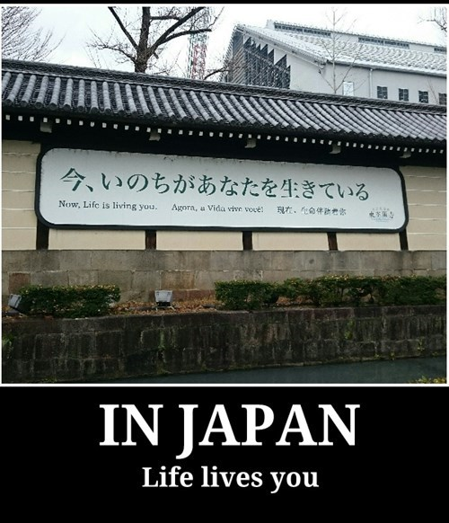 sign life wtf Japan funny - 8419661056