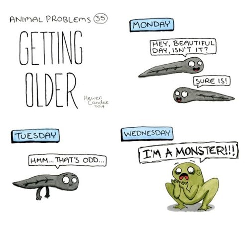 nature,frogs,monster,tadpole,web comics