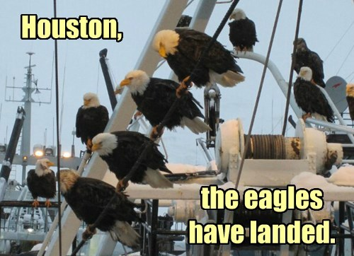 Houston, the eagles have landed.