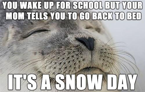 school snow days satisfaction seal - 8420230912