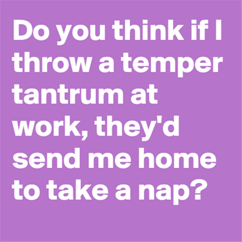 monday thru friday,tantrum,nap