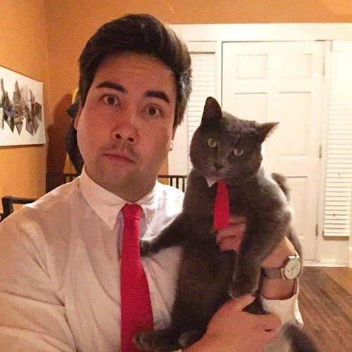 tie,poorly dressed,matching,Cats,g rated