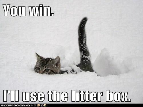 You win.  I'll use the litter box.