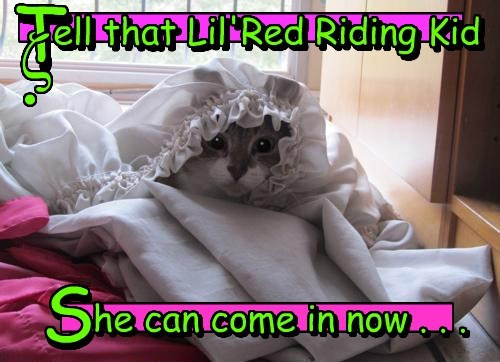 disguise,Little Red Riding Hood,Cats