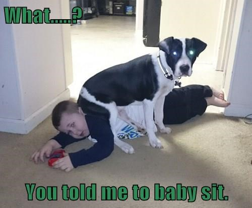 What.....? You told me to baby sit.