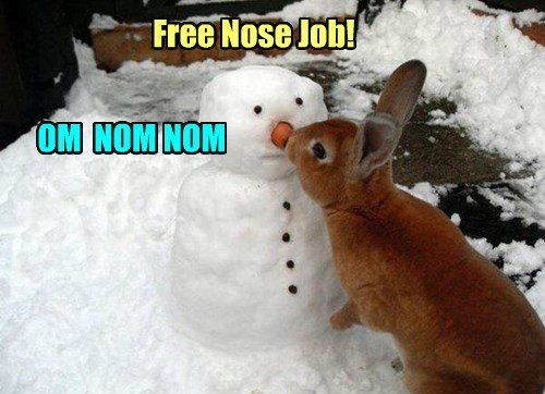 carrot,bunny,plastic surgeon,snowman,noms
