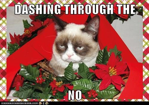 caption,dashing,no,through,Grumpy Cat